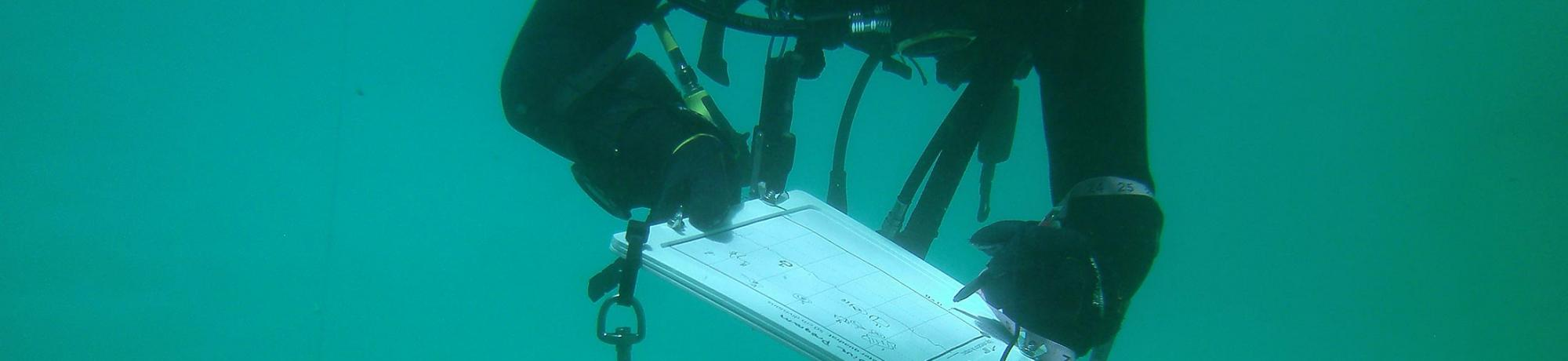 diver note taking